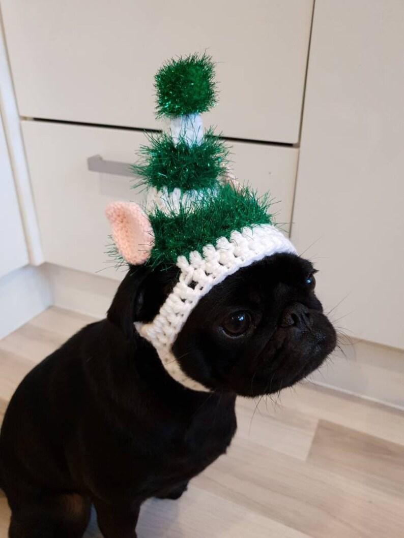 490f659bc08 Christmas elf dog Hat Crochet Christmas hat pug hat hats