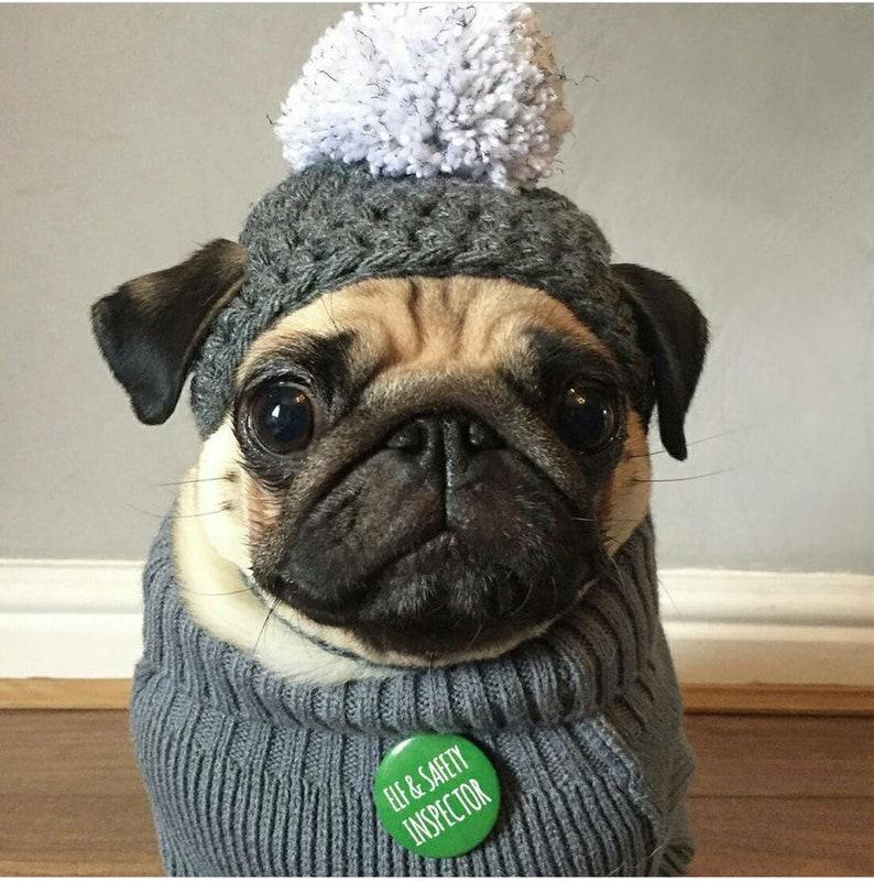 Crochet PomPom dog Hat Crochet hat pompom pug hat hats for  e2ee420ba91