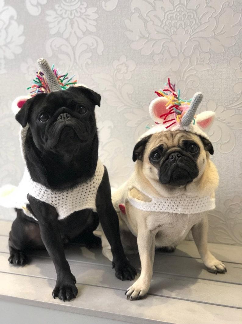 8330b2e776a Crochet Unicorn Sweater dog jumper dog sweater unicorn dog