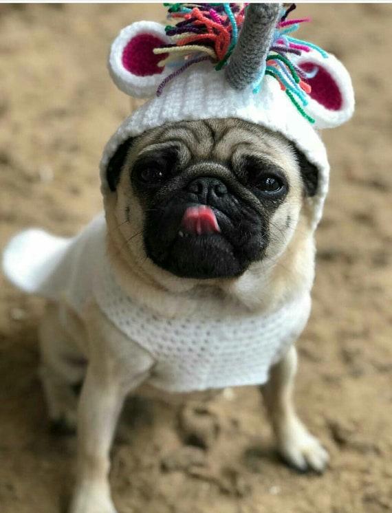 Crochet Unicorn Sweater; dog jumper; dog sweater; unicorn dog sweater; dog  fashion; dog clothes; pug sweater; unicorn jumper;crochet unicorn