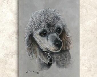 c9b8566c2db7 POODLE , Poodle Dog Art print, Toy Poodle Giclee Art Print, Dog Painting, Custom  Pet Portrait and Prints