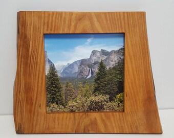 Live Edge Picture Frame 10 x 10 Caramel Finish