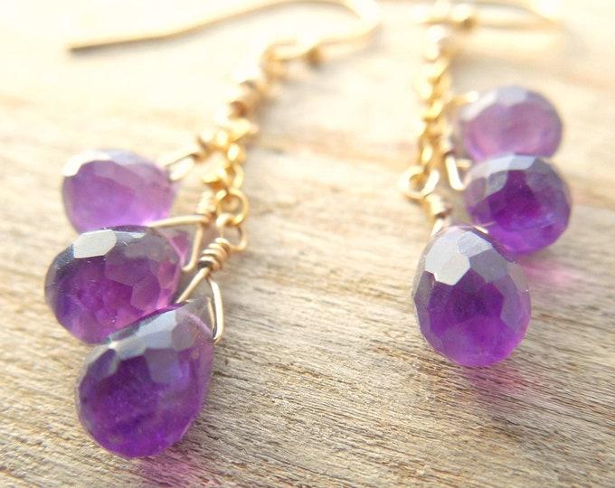 Amethyst Birthstone Earrings