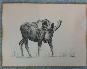 James Jokerst Moose print