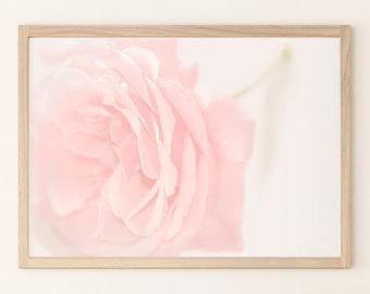 ROSE WALL ART, Rose Print, Gift for Women Mom, Rose Art Photography, Rose Art Poster, Large Photo Print, Blush Pink Wall Decor, Flower Decor