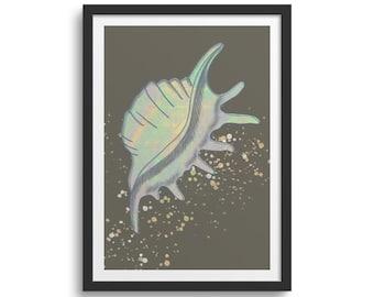 Seashell Art Print Seashell Print