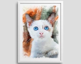 Cute Kitten Wall Art, Close Up of White Kitten Blue Eyes Cat Decor