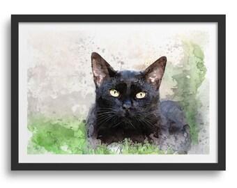 Cute Black Cat Art Print Close Up, Black Cat Laying in Grass