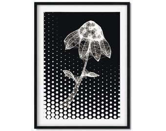 Cobweb Daisy Flower Art, Cobweb Flower Art Print