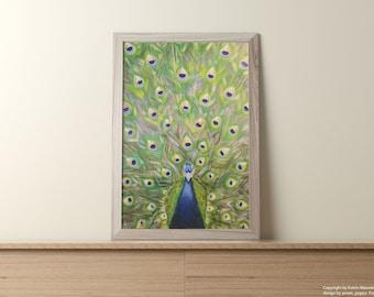 Peacock | Peacock, art print, print