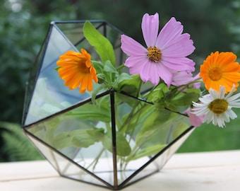 Terrarium Icosahedron. Geometric Glass Terrarium. Handmade Terrarium. Stained Glass Terrarium. Succulent Planter. Stained Glass Planter
