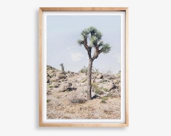 California Desert - Joshua Tree Photography - Desert Tree Print - Desert Printable