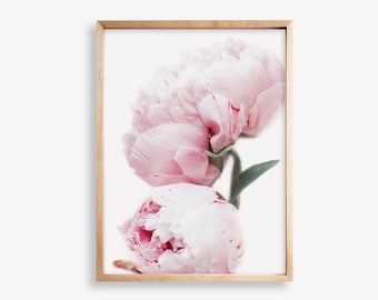 Peonies Print, Peony Wall Decor, Pink Peonies Print, Wall Art, Flower Print,  Peonies Photo, Gift for Her, Floral Poster, Botanical Print