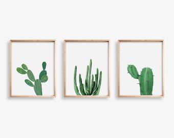 Cactus Print Set of 3 Print Large Cactus Wall Art Cactus Photography, Nature Print  Cactus SouthWestern Decor Printable Art Succulent Print