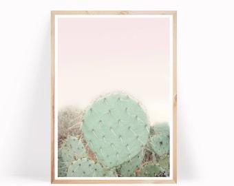Cactus Photo, Cactus Poster, Printable Cacti, Boho Decor, Cactus Download, Digital Print, Desert Cactus Print, Wall Art, Botanical Print