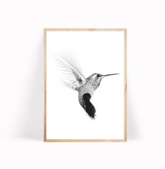 Matted Humming Bird Floral Foil Art Print~Affordable Art~8x10~Animal