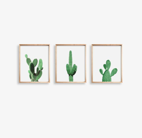 photo regarding Cactus Printable named Established of 3 Prints Cactus Wall Artwork, Cactus Printable, Cactus Print Electronic Down load, Desert Decor, Substantial Wall Artwork, Cactus Desert Image