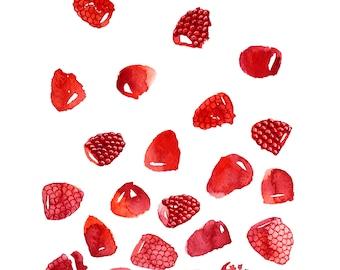 Raspberry Red - 9x12 prints - summer fruit illustration - fine art prints - fruit art - kitchen wall art - room decor - art wall - design
