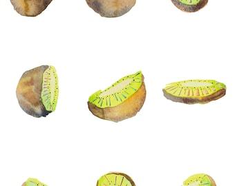 Kiwi - summer fruit - fruit illustration - room decor - kitchen wall decor - art wall - fine art prints - 9x 12 print - food prints
