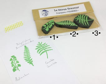 Tampons fougères, tampons plantes tropicales, tampons forêt équatoriale, tampons gravés main, tampons bullet journal, tampons mariage
