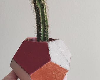 Mini Concrete Planter
