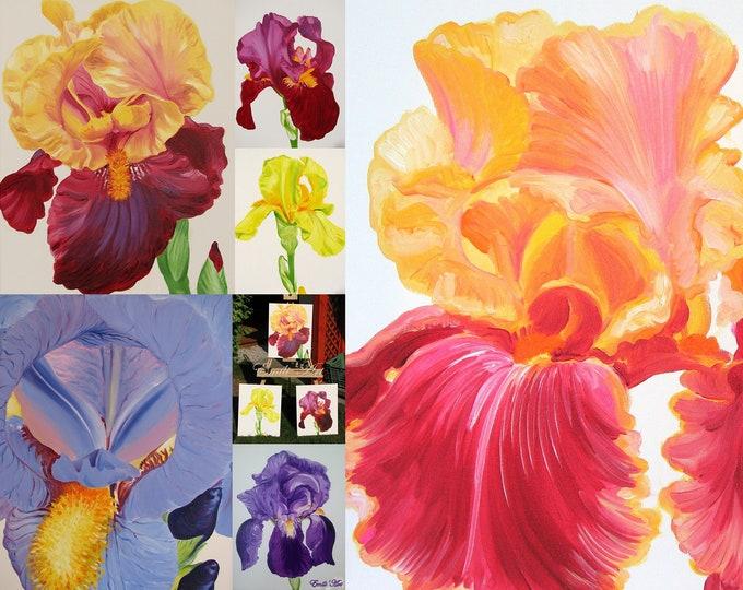 Irises postcard set