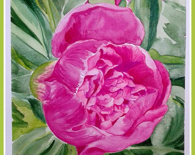 Peony flowering watercolor original painting