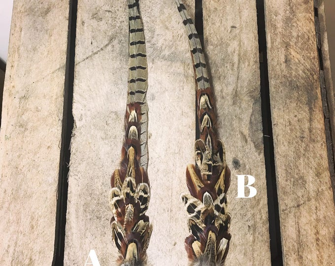 Large pheasant feather and cartridge pin/brooch