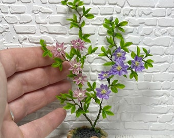Dollhouse clematis, Scale 1/12