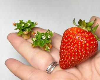 Dollhouse Strawberry Plant in pot, Scale 1/12