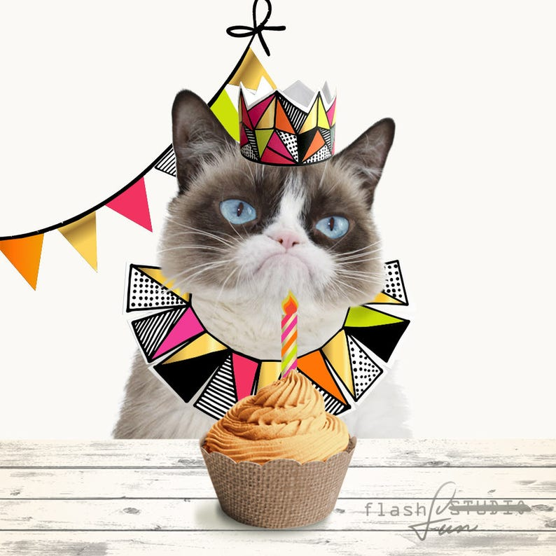 Cat Birthday Party Printable Package Pet