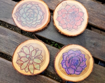 Live Edge Succulent Coasters on Cedar, Pyrography Art, 4 woodburned plain or choose colored with chalk pencils, Gardener lover, cabin decor