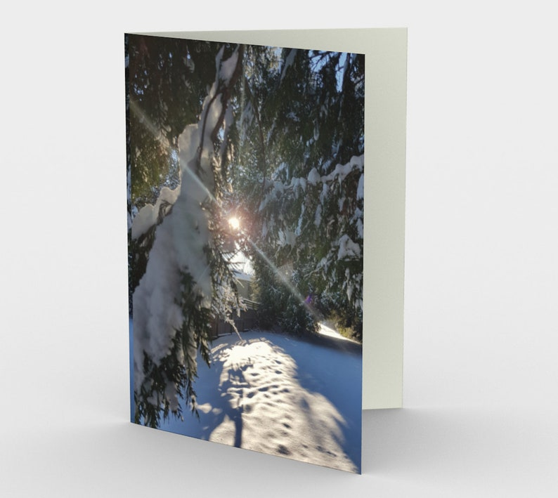 Snowy Winter morning set of 3 holiday cards from original 3 cards-order direct
