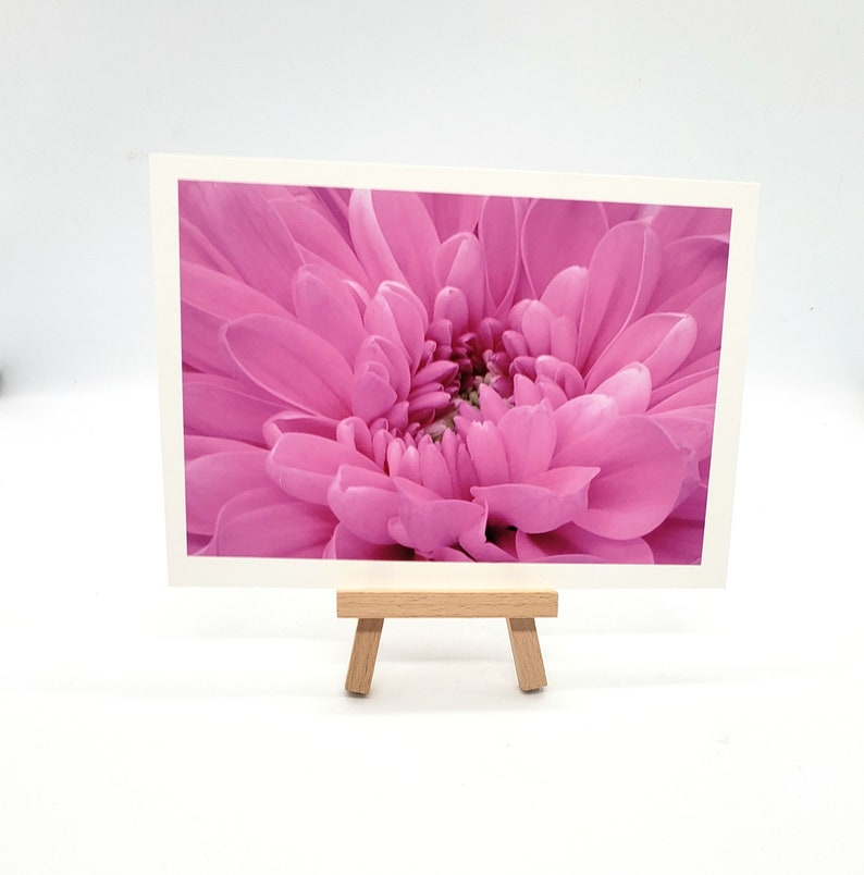 Flower photography art print print or matted print Beautiful image 0