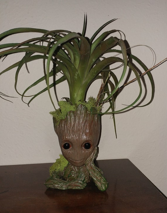 I Am Groot Succulent Faux Plant In Baby Groot Bonsai Rooter Guardians Of The Galaxy Flower Display A Great Gift Free Domestic Shipping
