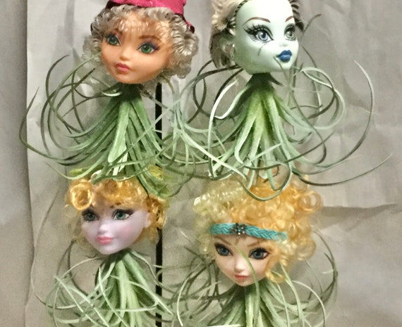 Doll Head Planters -  BJD Monster High Bratz vinyl Doll Heads with Hanging Faux Air Plant Oddities and Curiosities