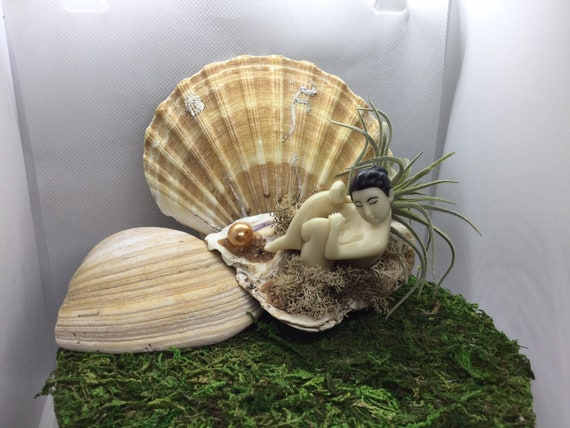 Oyster Pearl Lady with Faux Succulent Plant in oyster Shell Beautiful naked lady on the Beach
