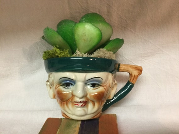 Vintage Toby Mug with Succulent faux plant in Rare vintage Toby Cup Pirate
