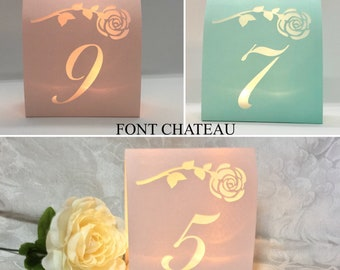 Rose TABLE NUMBERS, Table Number Luminaries, Lighted Table Numbers, Elegant Wedding Centerpieces, Pink Table Numbers
