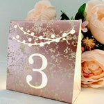 String of Lights Table Numbers • ROSE, GOLD, SILVER or Copper Foil Mercury Glass Cardstock • Luminaries • Wedding Table Number Luminaries