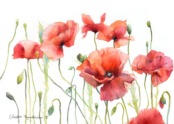 Poppy Watercolor Print Floral Print Red Poppy Flower Home Etsy