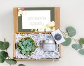 Sympathy Gift Live Succulent Gift Box Terra Cotta Gift Soy Candle Gift Gift For Her Gift For Mom Gift For Sister Gift