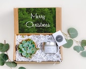 Christmas Mini Gift Box- a succulent in terra cotta pot and a 100 natural scented soy candle