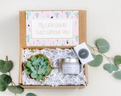 Succulent Gift Box Trending Gift Soy Candle Gift Gift For Her Gift For Mom Gift For Sister Gift