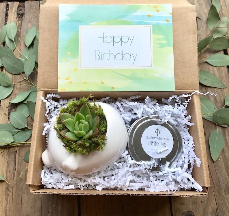 Gift Box  Best Friend Gift  Birthday Gift Box Pig Planter image 0