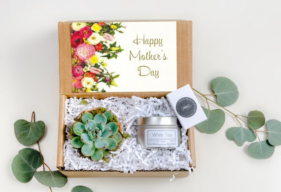 Mothers Day Gift Box Succulent Gift Box Set