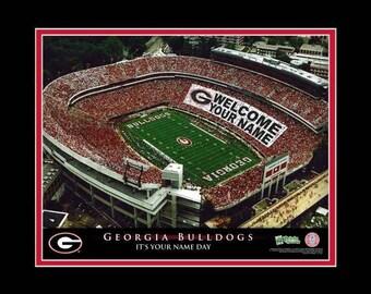University Of Georgia Sanford Stadium Print