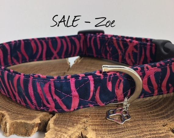 Sale Dog Collar, Zebra Collar, Zoe, Cute Dog Collar, Animal Print Collar