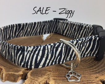 Zebra Dog Collar, Ziggy, Animal Print Collar