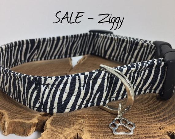Sale Dog Collar, Zebra Print, Ziggy, Cute Dog Collar, Zebra Print Collar, Animal Print Collar, Luxury Dog Collar.